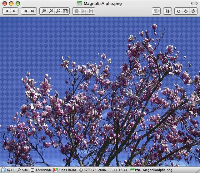 Open All Images Into a Single Preview Window on Mac OS